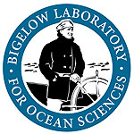Bigelow Laboratories | Ocean Science & Research
